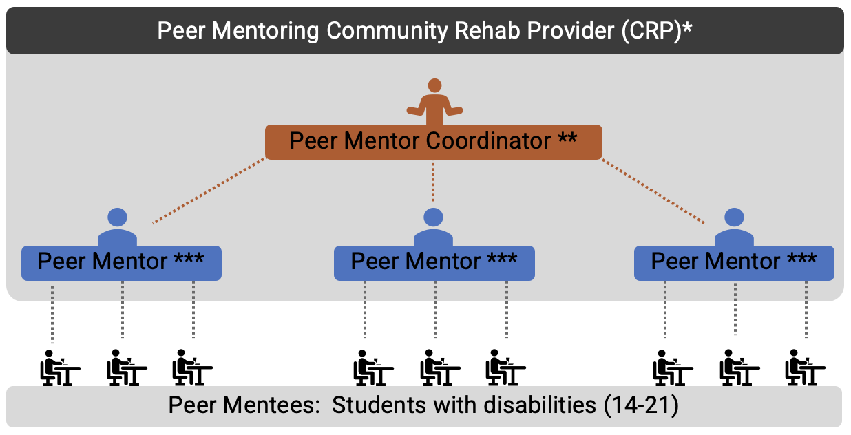 Peer Mentoring Community Rehab Provider (CRP) diagram which represents a Peer Mentor Coordinator, working with peer mentors, who then work with mentees, who are students with disabilities (14-21).